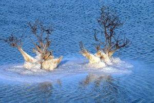 טיול ג'יפים בים המלח